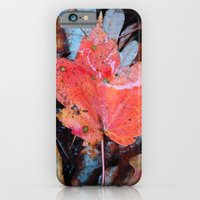 iPhone & iPod Case featuring autumnal reverie 646 by vincent cimino