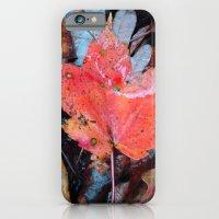Autumnal Reverie 646 iPhone 6 Slim Case