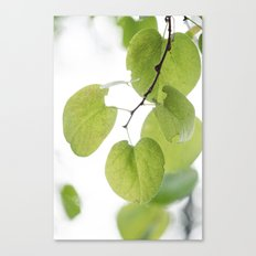 Against the Dying of the Light Canvas Print