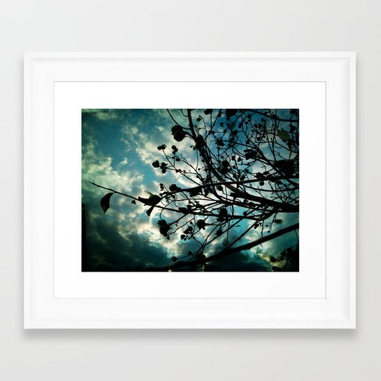 Buds and Branches Framed Art Print