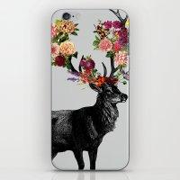 Spring Itself Deer Floral iPhone & iPod Skin