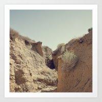 Desert Rut Art Print