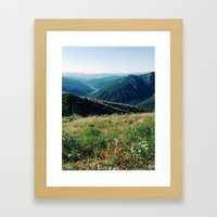 Gifford Pinchot National Forest Framed Art Print