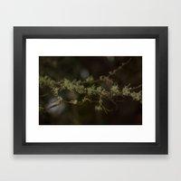 Tree Fuzz Framed Art Print
