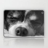 Rufio Sleeping Laptop & iPad Skin
