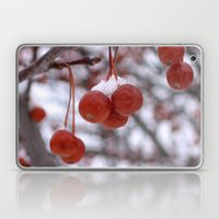 Winter Berries Laptop & iPad Skin