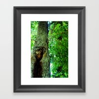 treehole2 Framed Art Print