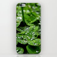 Bedazzled clovers iPhone & iPod Skin