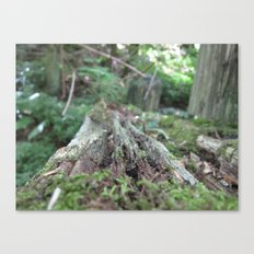 Log in the Woods Canvas Print