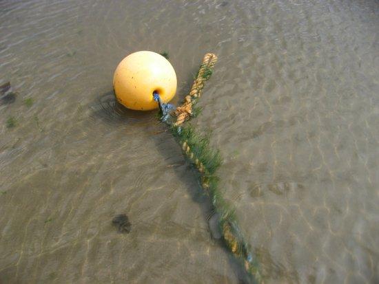 Yellow buoy bobbing on the sea Art Print