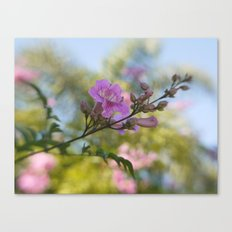 In Pastel Colors Canvas Print