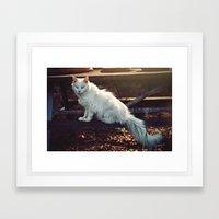 Ghost Cat Framed Art Print