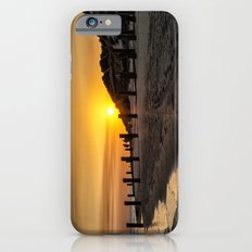 Crow Point iPhone 6 Slim Case