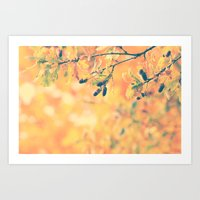 Oak Nature Photography Art Print