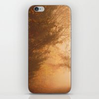 Find Your Own Way iPhone & iPod Skin
