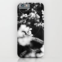 Surrounded by Dreams B&W iPhone 6 Slim Case