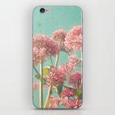 Pink Milkweed iPhone & iPod Skin