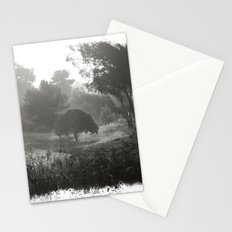Foggy Path Stationery Cards