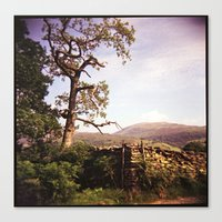 Tree and Stile Canvas Print
