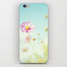 A little bit of  heaven. iPhone & iPod Skin