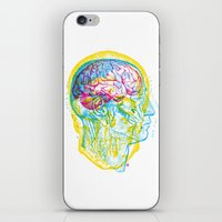 Anatomy Skull iPhone & iPod Skin
