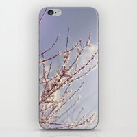 Spring is here again iPhone & iPod Skin