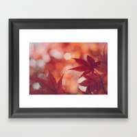 Maple Reds Framed Art Print