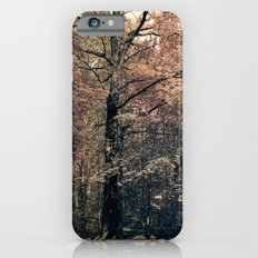 Tales from the trees 2 iPhone 6s Slim Case