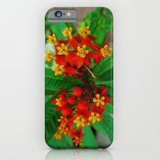Orange and Yellow Flowers iPhone 6 Slim Case