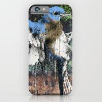Woodpecker iPhone 6 Slim Case