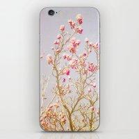 Sweet Pink Magnolias iPhone & iPod Skin