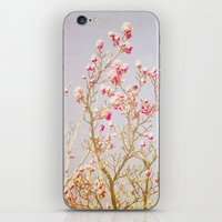 Sweet Pink Magnolias iPhone & iPod Skin