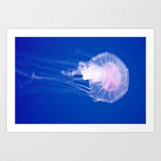 Blue Jellyfish 1 Art Print