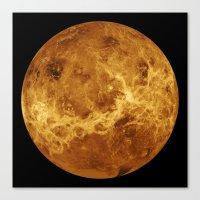 Venus Close Up Canvas Print