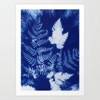Fern And Leaf Cyanotype Art Print
