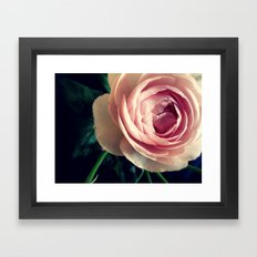 Stop to smell the roses 2 Framed Art Print