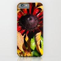 Still Vibrant iPhone 6 Slim Case