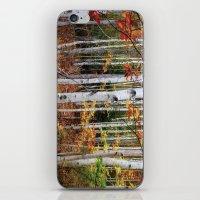 Acadia Fall color iPhone & iPod Skin