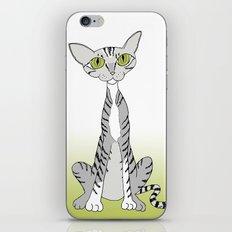 Tabby Cat iPhone & iPod Skin