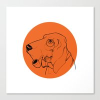 Canis Canvas Print