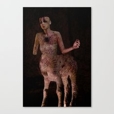 broken hearted dreamer Canvas Print