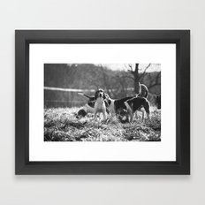 Foxhound Framed Art Print