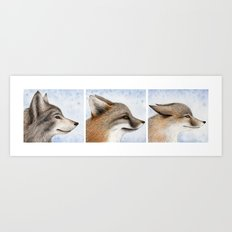 Vanishing Canadian Canids Art Print
