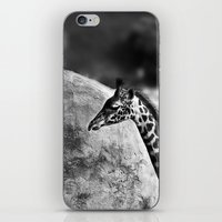 Whiteout - Giraffe iPhone & iPod Skin