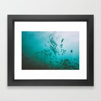 Dominican Framed Art Print