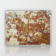 this fall day Laptop & iPad Skin