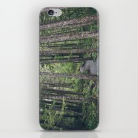 A Walk Through The Trees iPhone & iPod Skin