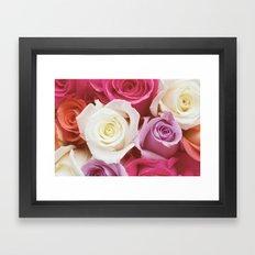 Romantic Rose Framed Art Print