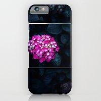 Boastful Vanity iPhone 6 Slim Case