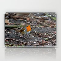 Winters Robin Laptop & iPad Skin
